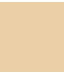 services-icon02